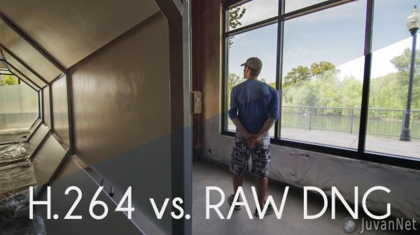 H.264-vs.-RAW