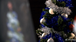 Christmas Decoration and Painting (7)