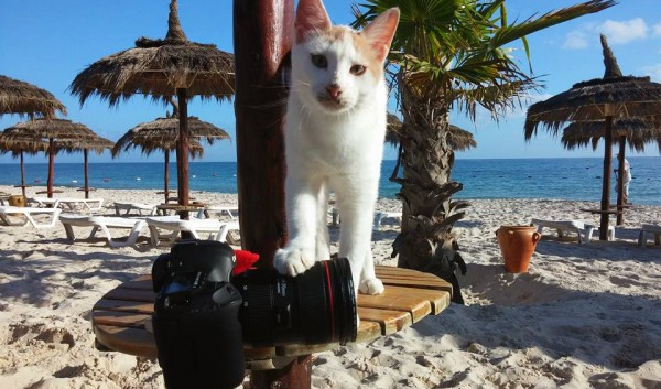 Tunisia-camera-asistent